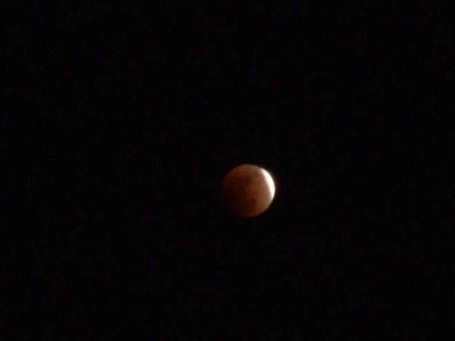 eclipse lunaire comme celle prédite par Christophe Colomb le 29 février