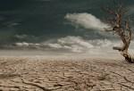 Journée mondiale de lutte contre la désertification et la sécheresse