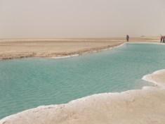 Chott el-Jérid : est la plus vaste plaine saline ou sebkha tunisienne avec une superficie d'environ 5 000 km2.