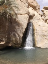 Chbika : un parc naturel au cœur du désert tunisien