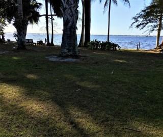 Park (1)