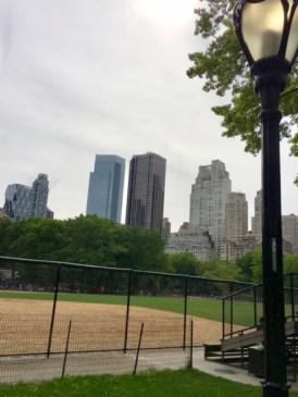 Central Park, New York 10021(3)