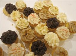 Cupcakes-Little-atelier-DIY