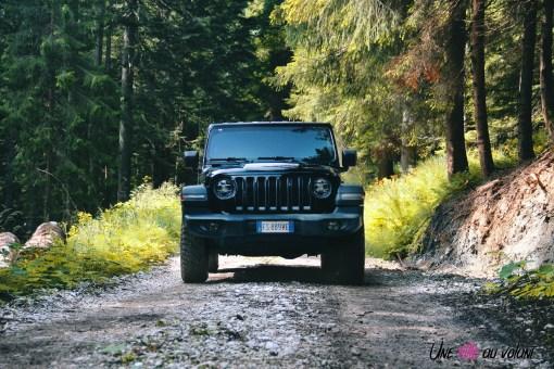 Jeep Wrangler Unlimited Rubicon 2019 face avant statique forêt