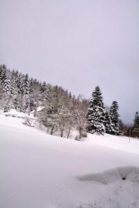 Sentier sous la neige - Photo Celine Schnell Une Fille En Alsace