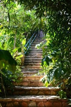 Secret Paradise - Notos - Corfou
