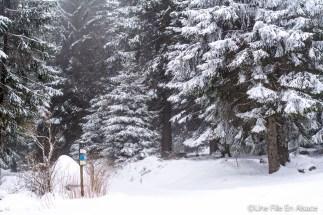 lac_blanc-11