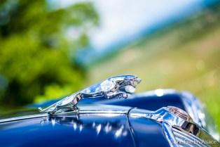 Vieille Jaguar Auto Rétro Vino Photo Céline Schnell - Une Fille En Alsace
