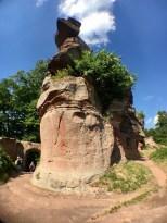 Ruines du Château de Falkenstein