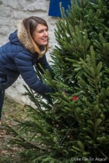 Instameet Noël Ecomusée d'Alsace - Photo Céline Schnell - Une Fille En Alsace