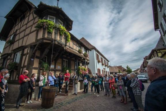 Sentier Gourmand de Scherwiller - Photo Céline Schnell Une Fille En Alsace