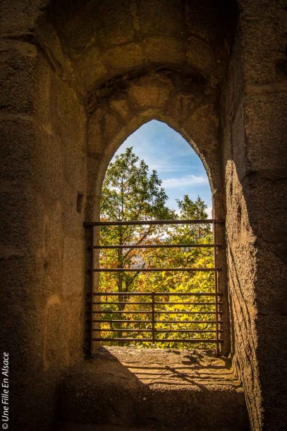 randonnee-chateau-spesbourg-andlau©Celine-Schnell-Une-Fille-En-Alsace-9