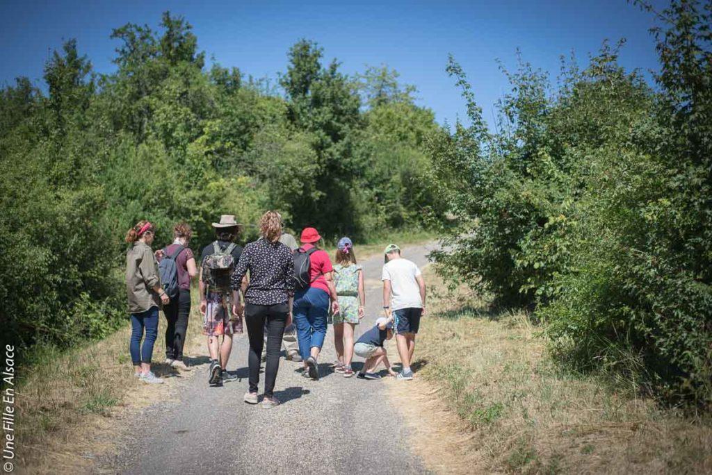 sortie-ecotourisme-la-villa-dehlingen©Celine-Schnell-Une-Fille-En-Alsace-2019