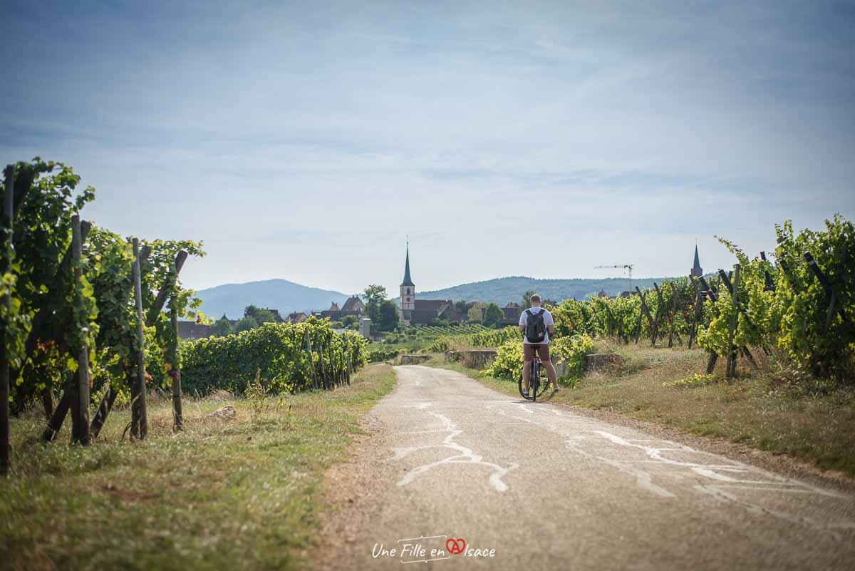 veloroute-vignoble-mittelbergheim©Celine-Schnell-Une-Fille-En-Alsace-2019