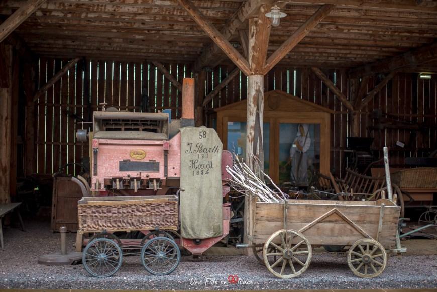 maison-rurale de-loutre-foret-kutzenhausen@Céline-Schnell-Une-Fille-En-Alsace-2020-23