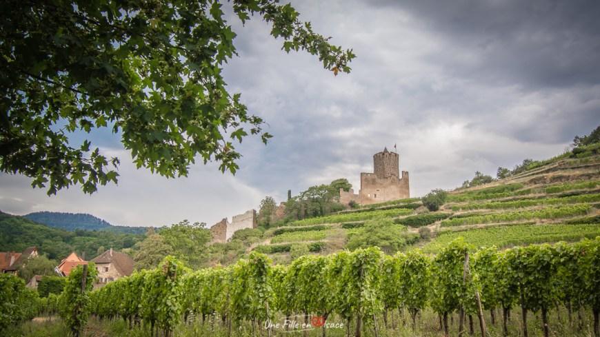 Grand Cru Schlossberg Kaysersberg@Céline-Schnell-Une-Fille-En-Alsace-2020