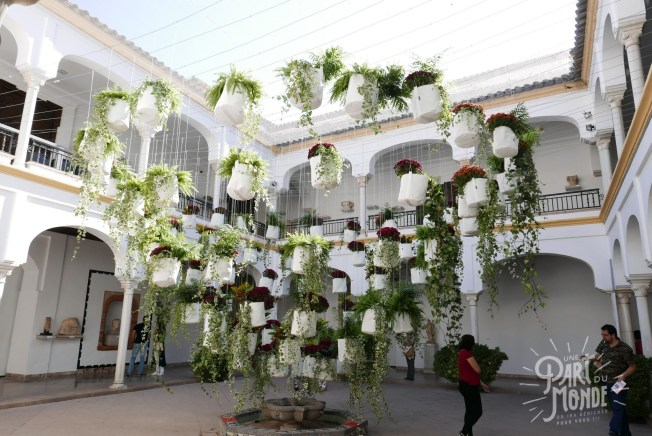 expo fleurs cordoue 2