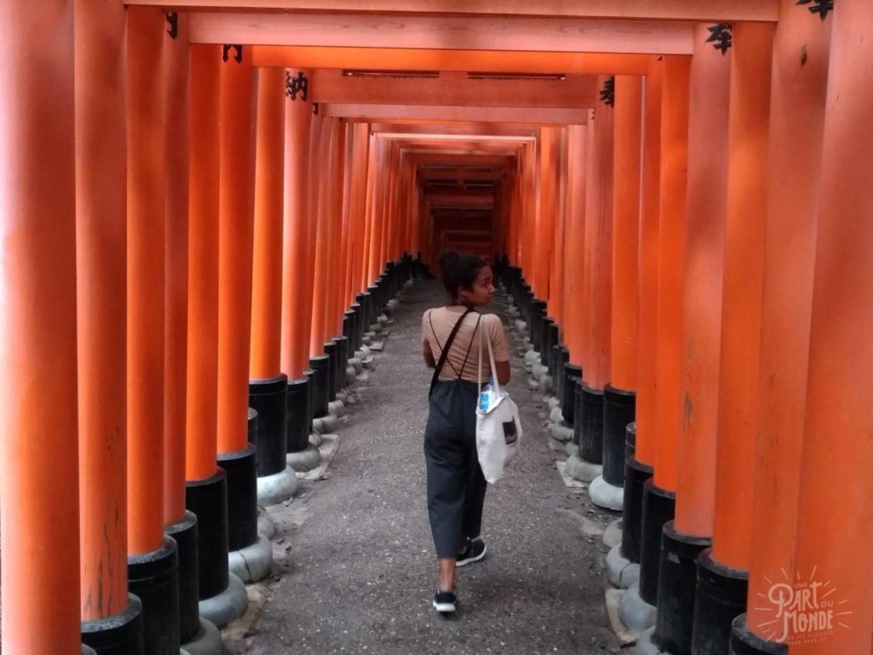 11 mois de tour du monde temple japon