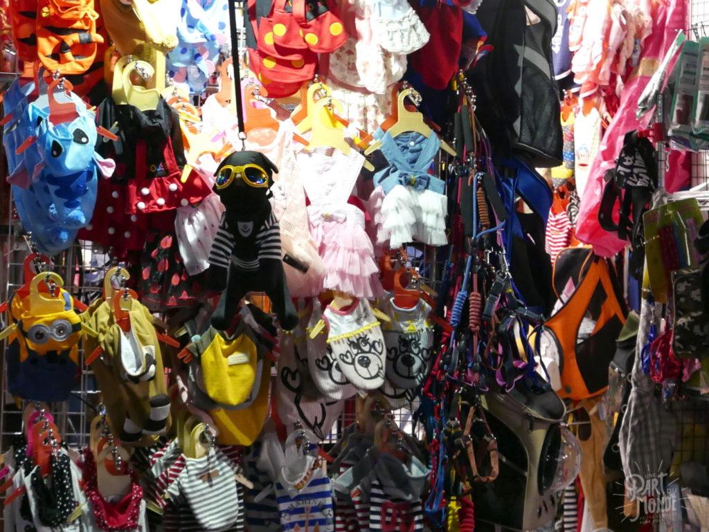 costume chien night market