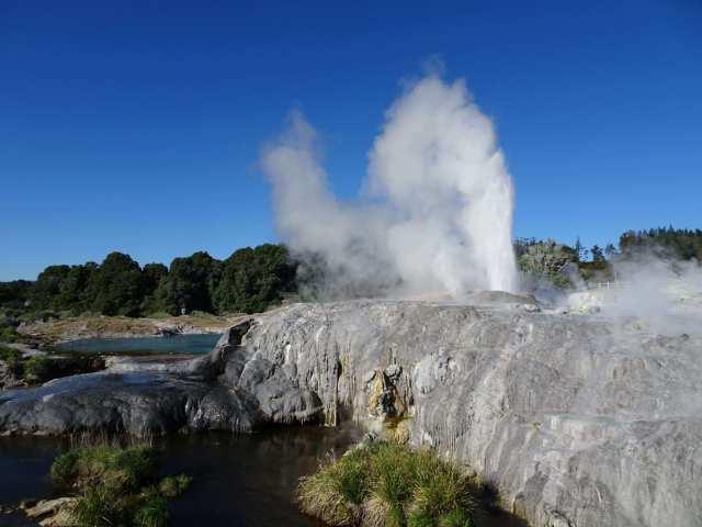 Photo-geyser-Rotorua-North-Island