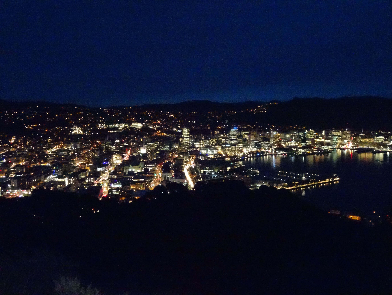 Photo-Wellington-from-Mount-Victoria