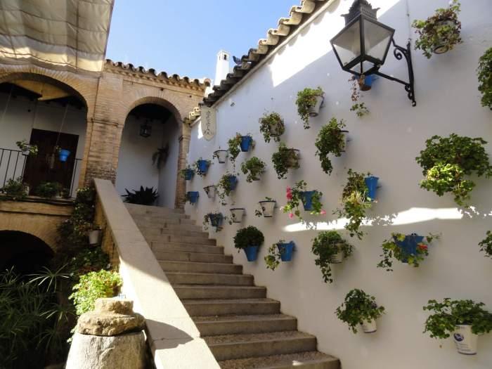 Witte muur volgehangen met bloempotten