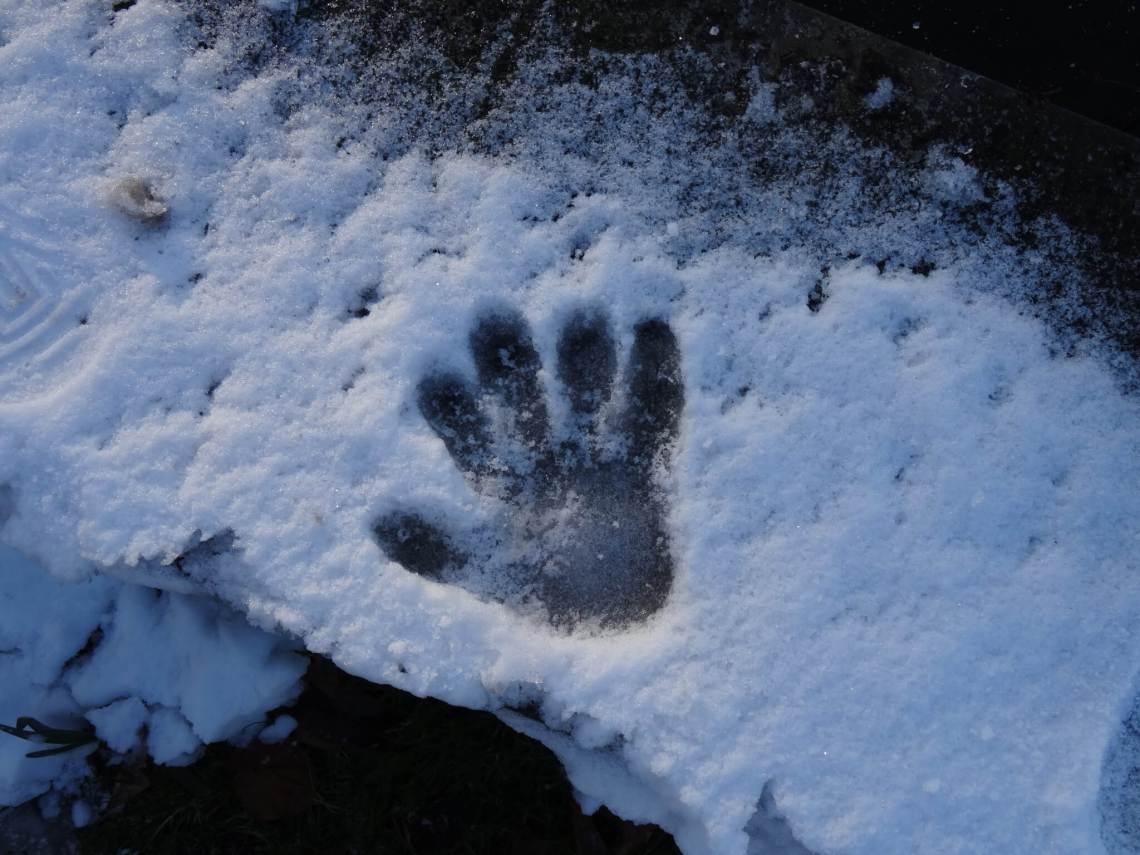 Handafdruk in de sneeuw