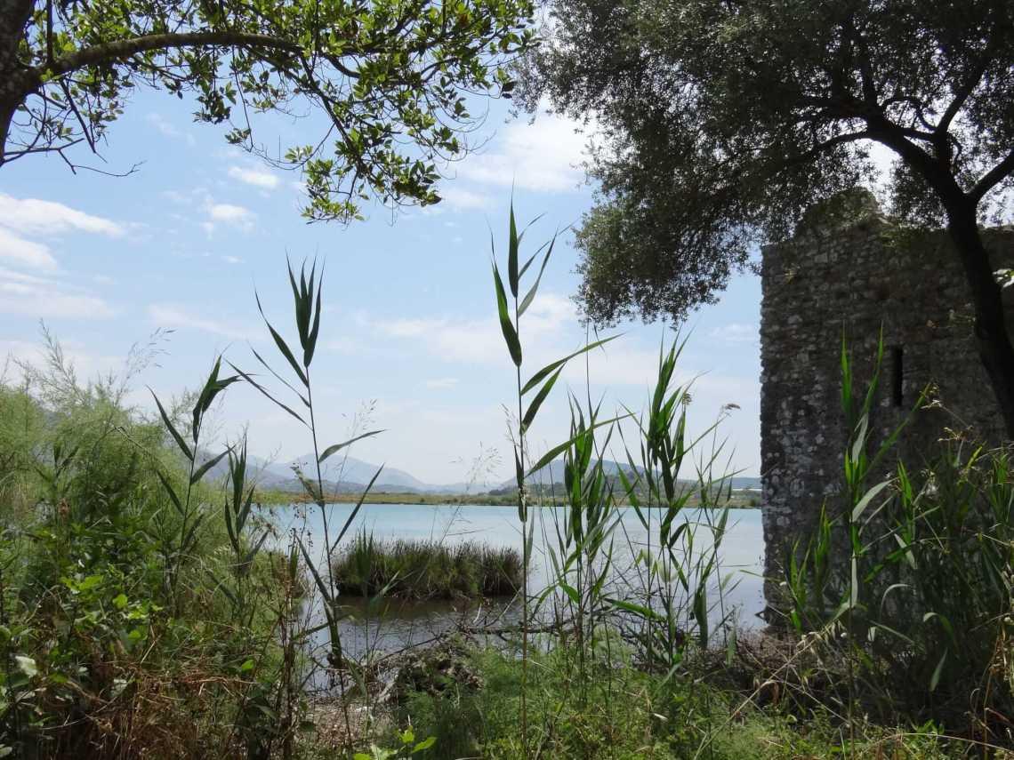 De oevers van het meer van Butrint staan vol riet en andere waterplanten