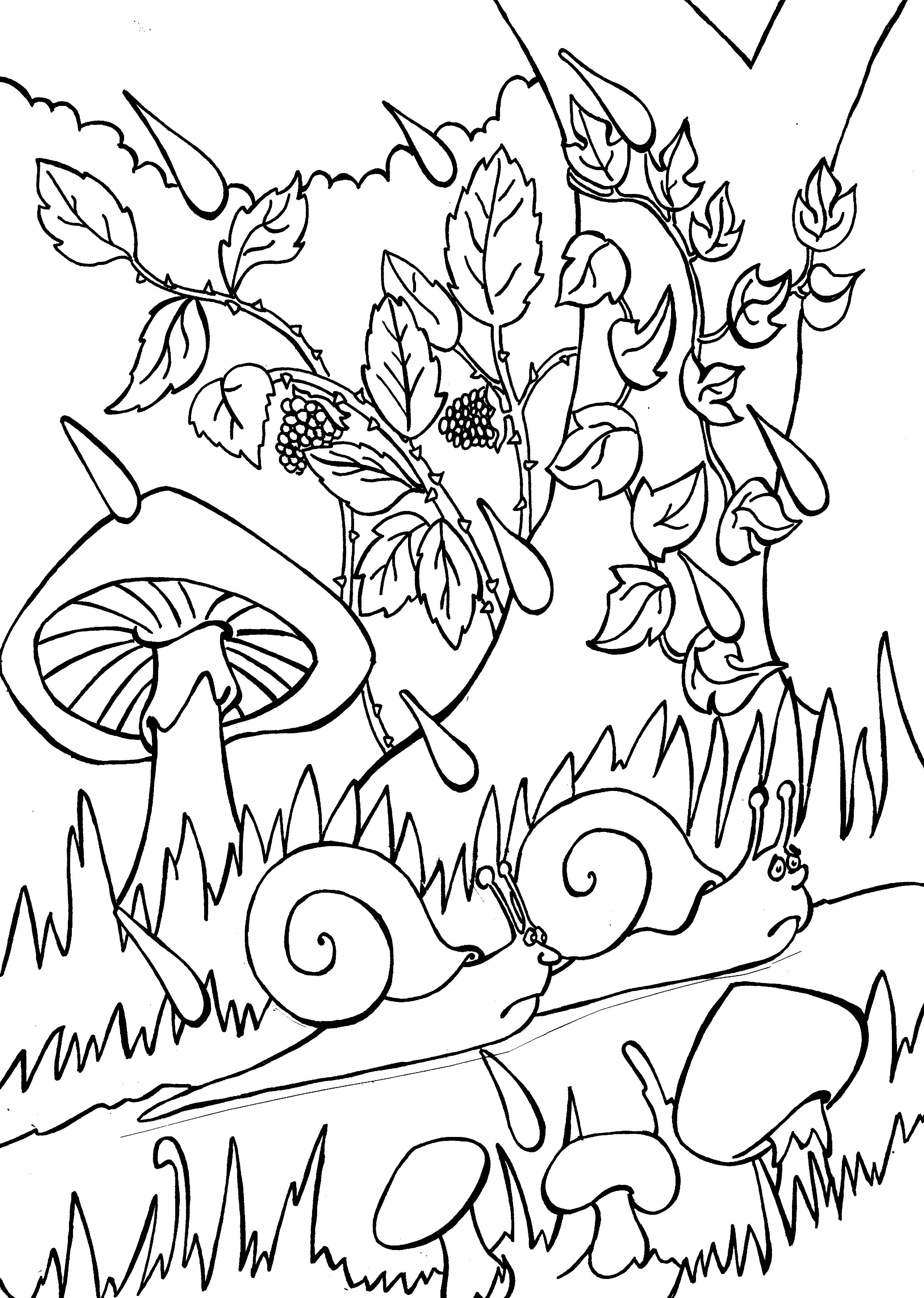 Jacques Prévert Chanson Des Escargots Qui Vont A L'enterrement : jacques, prévert, chanson, escargots, l'enterrement, Aujourd'hui, Janvier,, Tasse, Tisane, Réchauffer, Escargots.