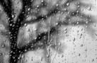 tumblr_static_black_and_white_rain_drops-1747