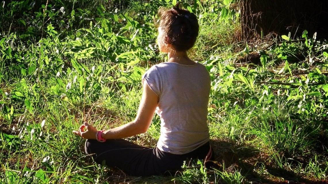 Séance de méditation dans l'herbe sur les bords de l'Allier