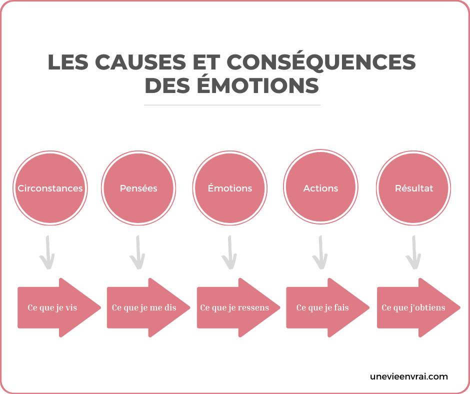 Shéma explicatifs des causes et conséquences des émotions - Une Vie En Vrai