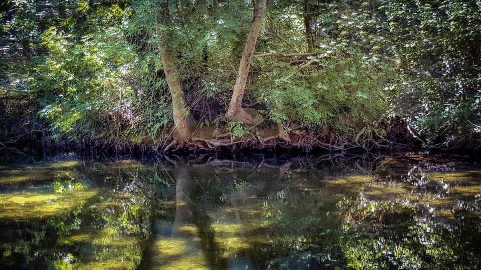 La rivière Le Jaur à Prémian dans le Haut Languedoc au mois d'avril