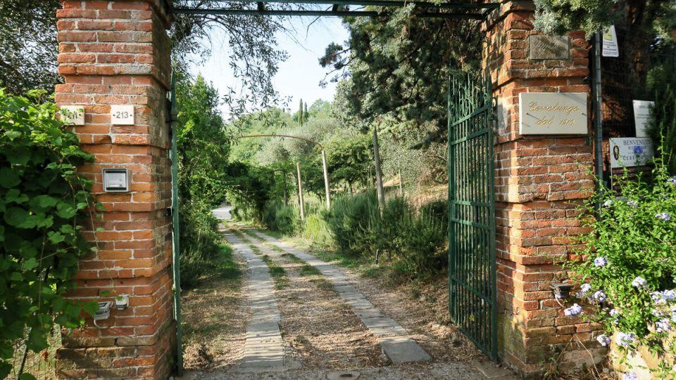 Portail qui s'ouvre sur un chemin à travers une végétation verdoyante au domaine de Cerrolungo