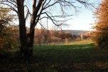 IMG_7350-arboretum-allegee