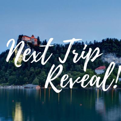 Next Trip Reveal