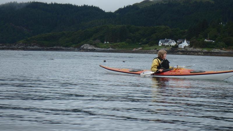 sea kayaking seals