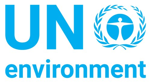 United Nations Environment Programme (UN Environment) - The UN Alliance for  Sustainable Fashion