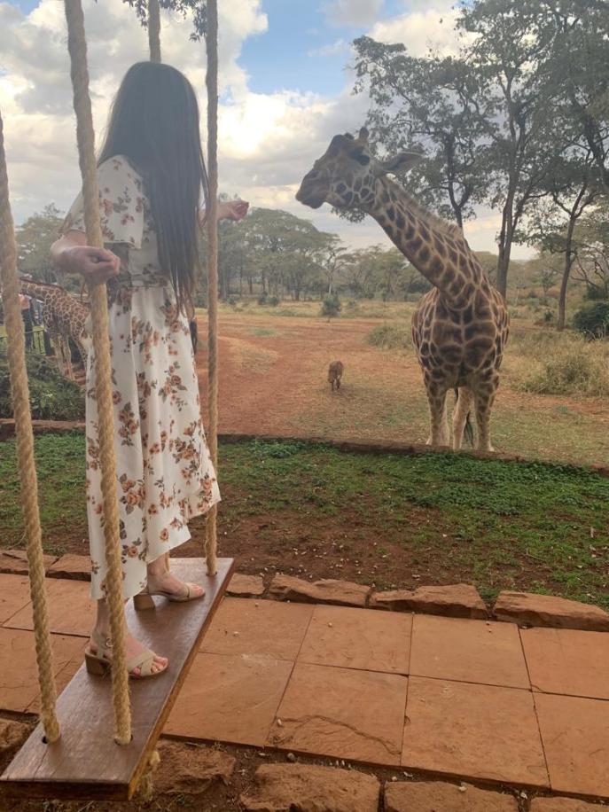 Swing at Giraffe Manor