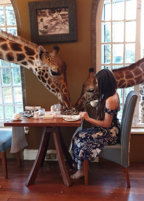 Breakfast with Giraffe manor
