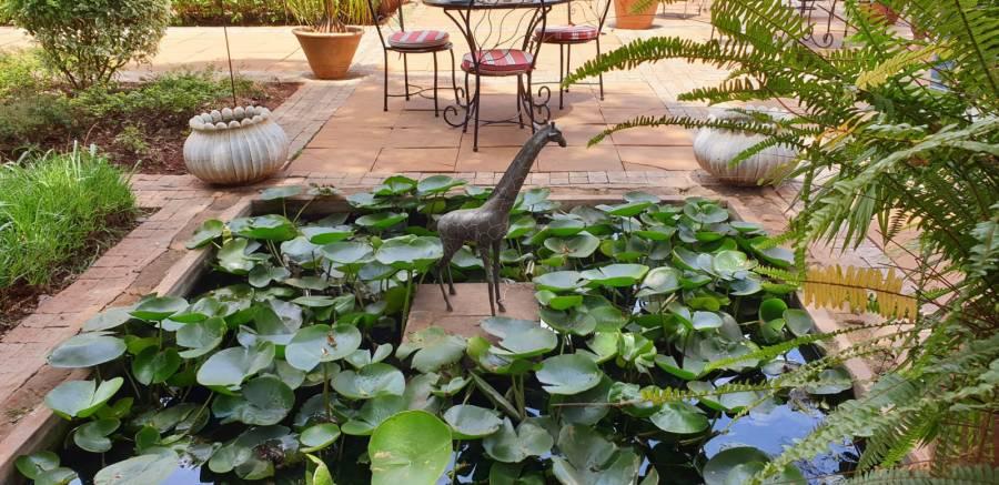 Giraffe manor grounds