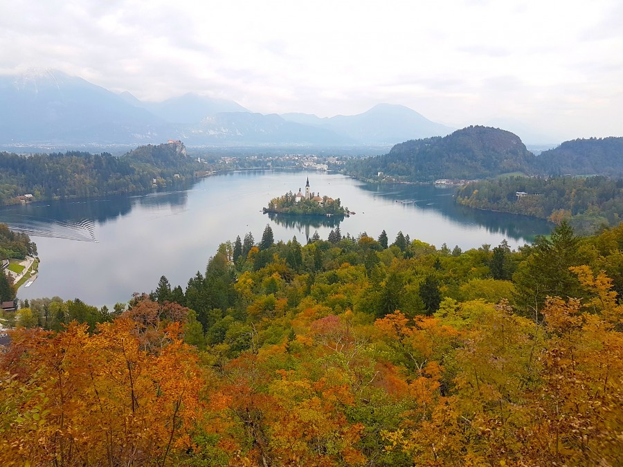 Further back view of Lake bled from Ojstirca viewpoint