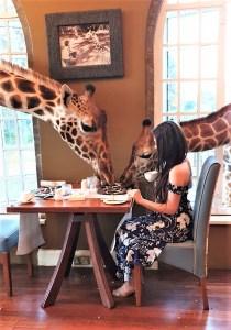Breakfast with Giraffes: a bucket list experience