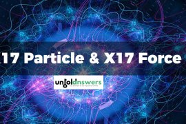X17 Particle and X17 Force
