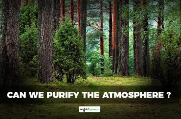 Purify the Atmosphere