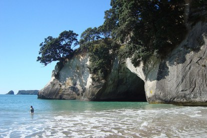 Creating Art -  cathedral cove photo