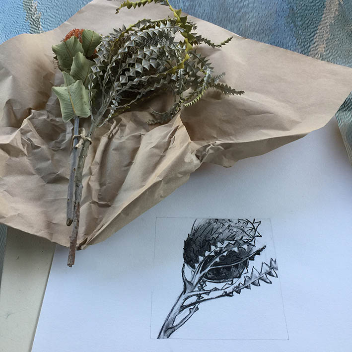 Preliminary drawings,banksia,arthur _leslie_dow,georgia_okeeffe,kadira_jennings