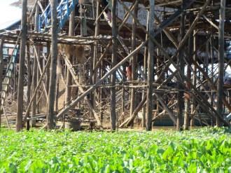 Kampung Phlok