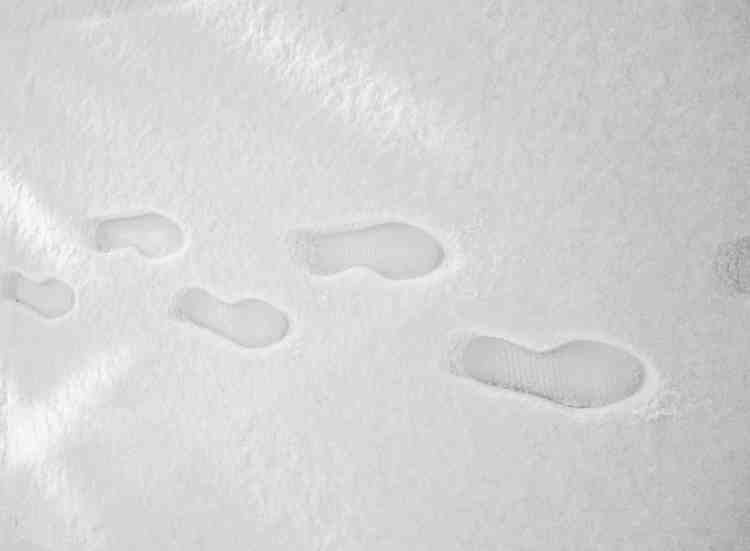 footprints in winter snow