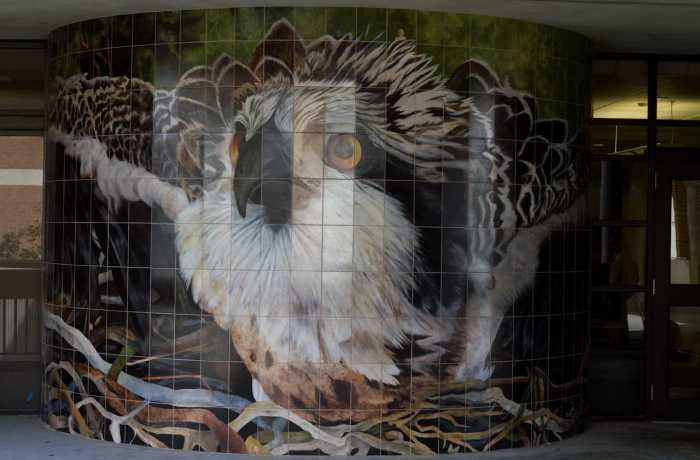 Art students create mural masterpieces around campus